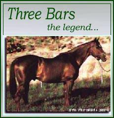Three Bars