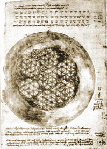 Flower of Life - Davinci