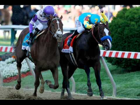 Triple Crown hopeful I'll Have Another: From a Bluegrass baby to the Belmont Stakes