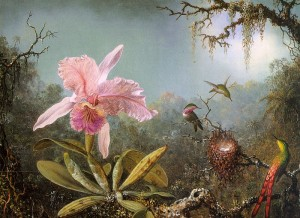 Cattelya Orchid and Three Brazilian Hummingbirds 1871 by Heade, Martin Johnson