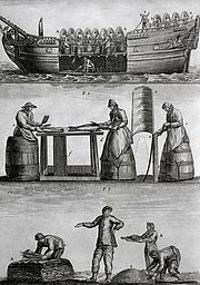 Three Panels Of Fish Industry In 1770