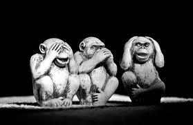 monkeys3